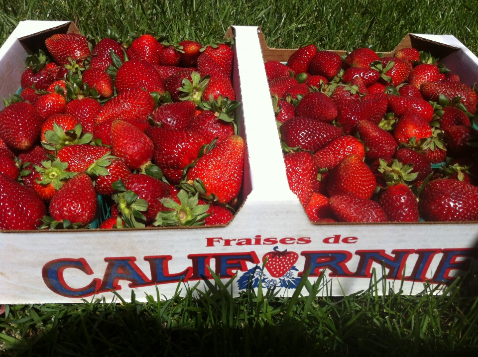 So many gorgeous strawberries.....