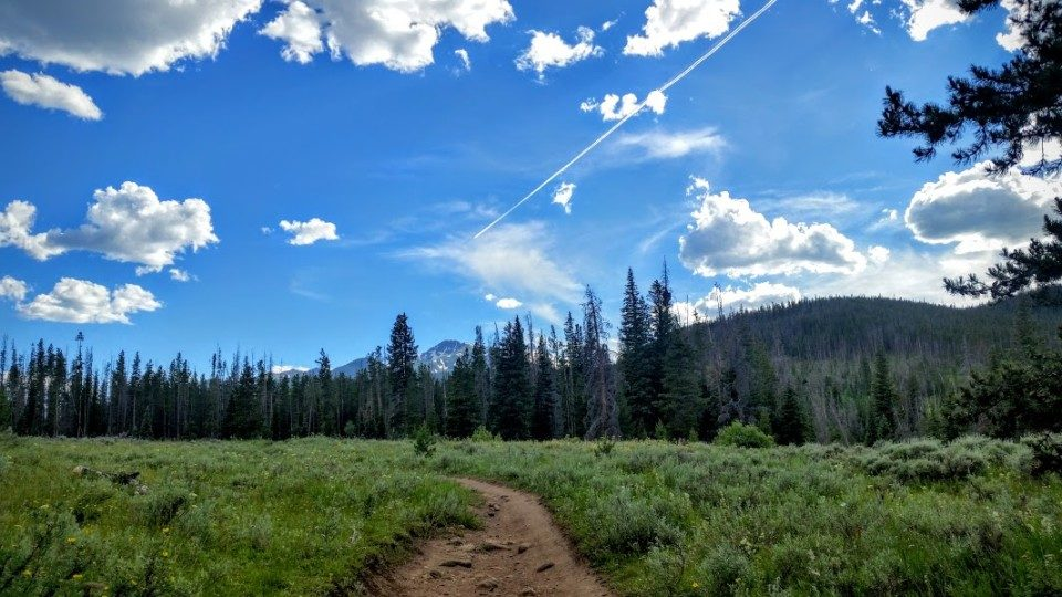 Trail Running after injury and pain